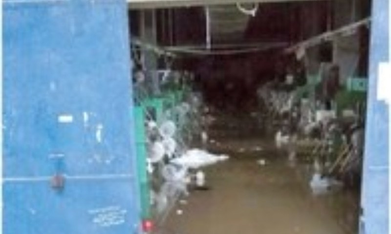 Karachi sees unparalleled disaster as rain sinks industrial units – Pakistan