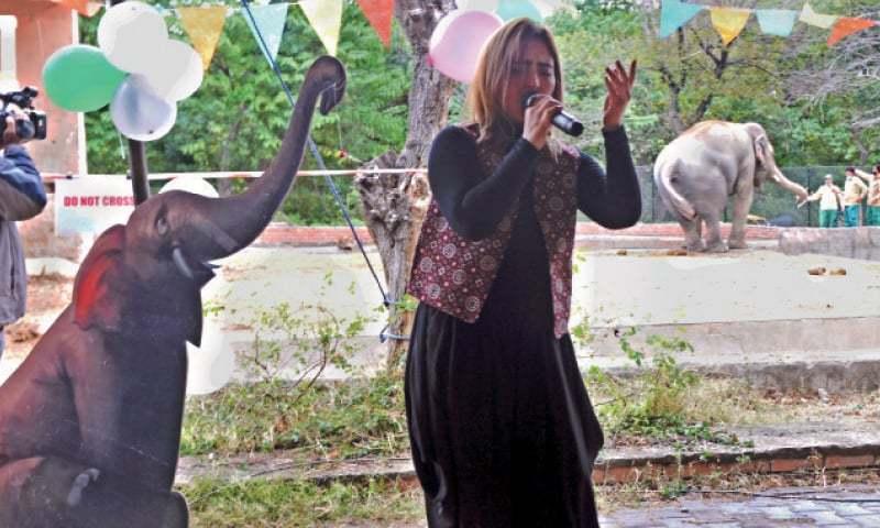 الوداعی پارٹی میں متعدد معروف شخصیات سے شرکت کی—تصویر: محمد عاصم