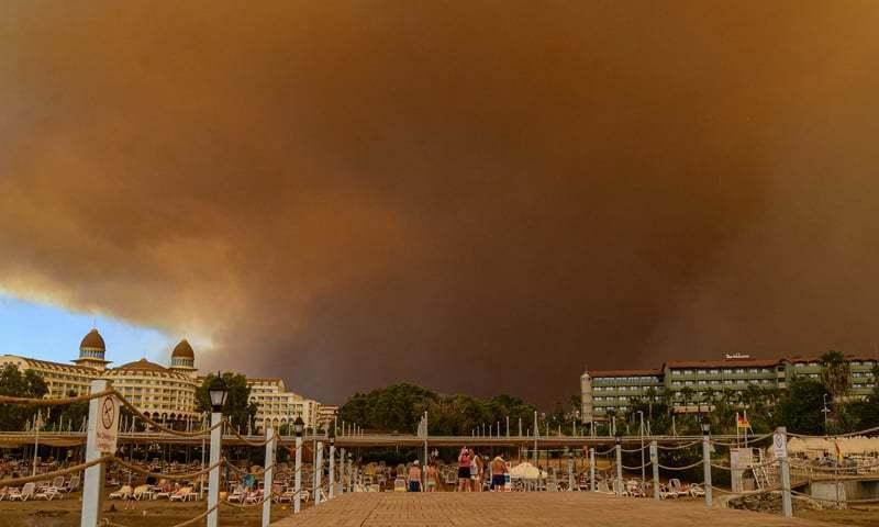 ڈیزاسٹر ایجنسی نے کہا کہ جنگل میں 36 مقامات پر لگی آگ پر قابو پالیا گیا — فوٹو: اے ایف پی