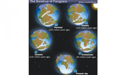 Continental drift: Pangaea, the supercontinent
