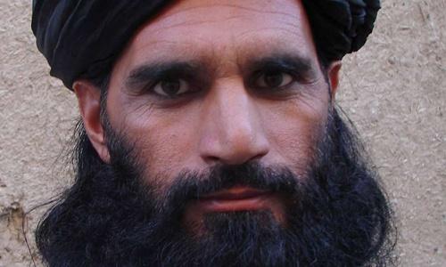 Pakistan Taliban appoint interim leader: spokesman