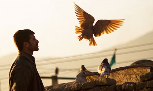Afghans and Pakistanis; friends turned foes?