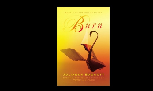 REVIEW: Burn by Julianna Baggott