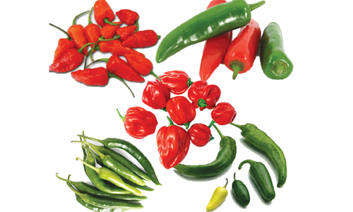 Scotch bonnets and the bhut jolokia