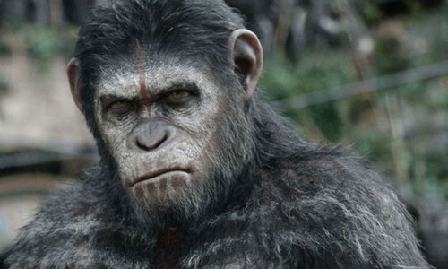 'Dawn of the Planet of the Apes' serves up thrilling action