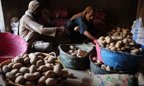 Duty-free import of 100,000 tons of potatoes allowed
