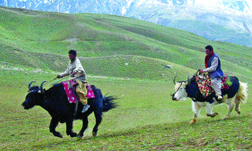 Baroghil festival to start from Aug 14