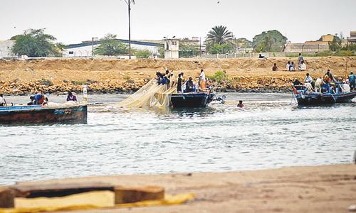 Festivity as fishing season resumes