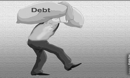 Interest payments on debt rise by 14.5pc