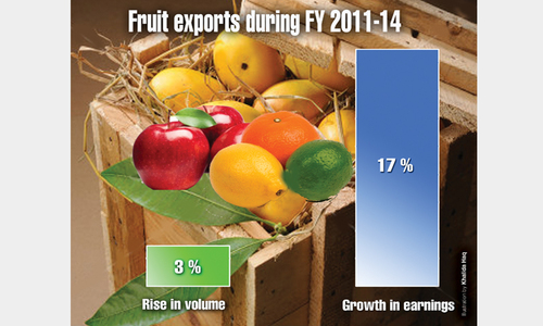Fatter fruit exports