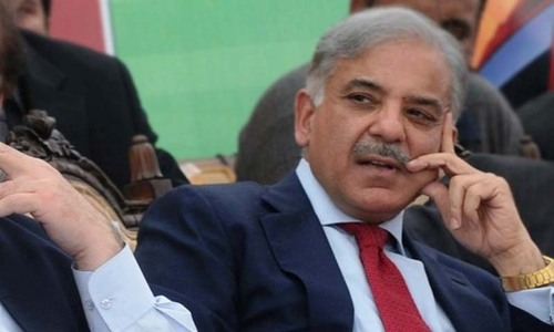 Shahbaz critical of Imran for 'indecent' remarks