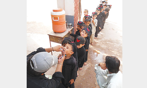 Utmost commitment against polio urged