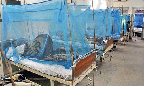 Pindi admin learnt no lessons from past dengue outbreaks
