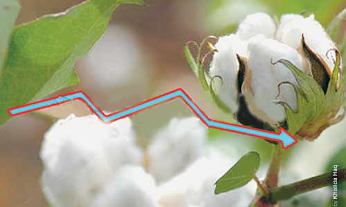 Depressed cotton trade