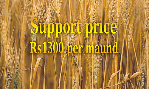 Cost of farm inputs and wheat support price