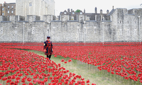 VIEW FROM ABROAD: A sea of poppies