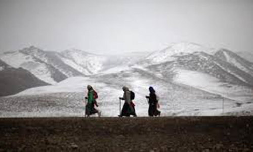 First humans settled on Tibetan Plateau 3,600 years ago: study