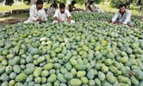 Agriculture sector to get subsidised electricity