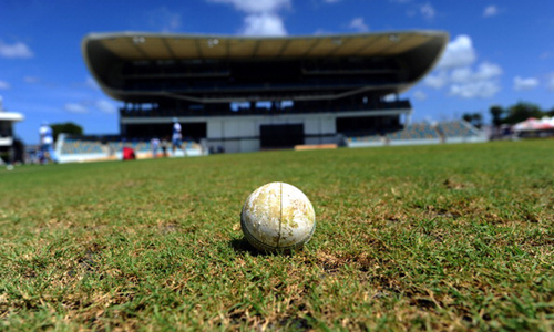 Cricket deaths caused from on-field incidents