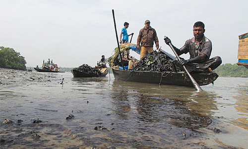 India on alert after oil spill in Sundarbans