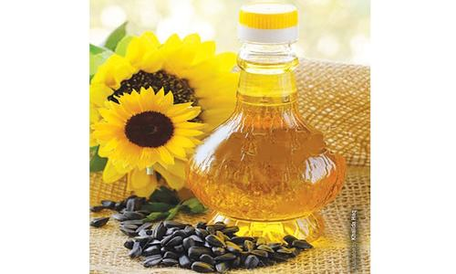 Low oilseed prices discourage growers