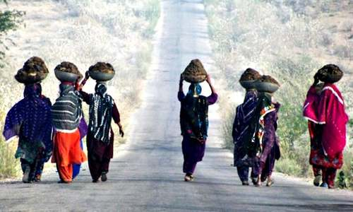 Women turn Thar drought into a lesson on sustainability