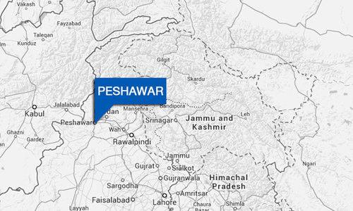 Two terrorists arrested in Peshawar raid