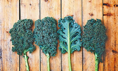 Food: On the kale trail