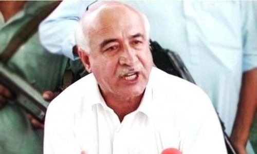Dr Malik vows action against parties' armed wings