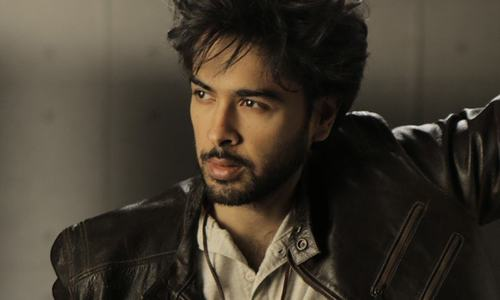"""""""My film will be a commercial one"""": Shehzad Roy"""