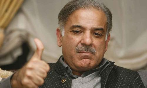 Wrong map: court moved for case against CM Punjab