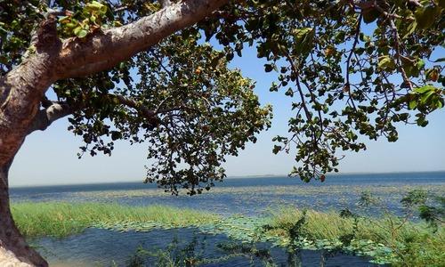 کینجھر: رومان، روزگار اور زندگی کی جھیل