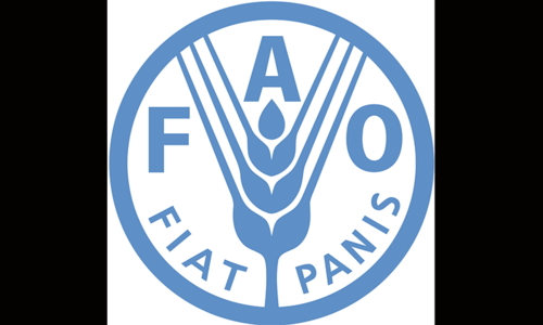 Table set for period of lower, more stable food prices: FAO