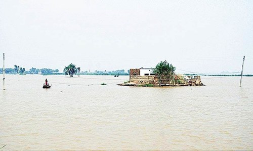 In homegrown innovation, Sehar village rises above flood woes