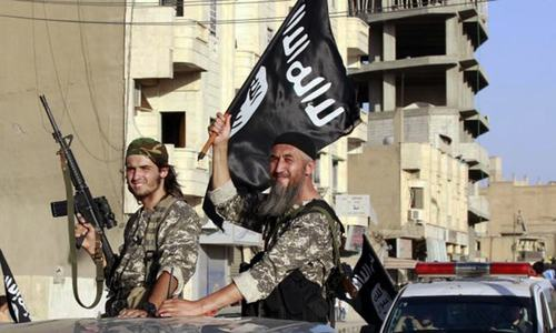 Germany pledges to stand with France in fight against IS