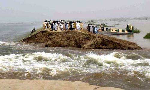 Climate change causing surge in migration: experts