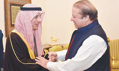 S. Arabia assured of support