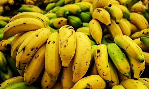 Mumbai police force-feed thief over 40 bananas in bid to retrieve gold chain