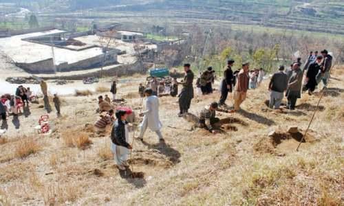 Plantation drive kicks off in Dir, Shangla