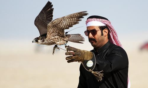 Hunting houbara: Royal kidnap casts spotlight on Gulf 'sport of kings'