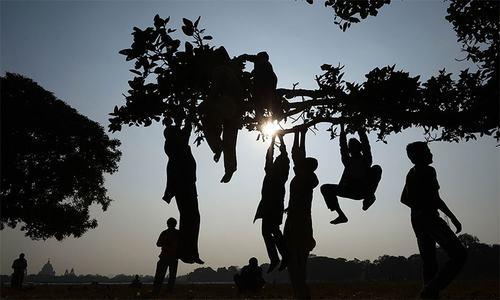 Child labour rife in Dir nurseries