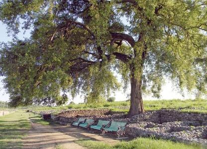 Sirkap –Taxila's ancient metropolis