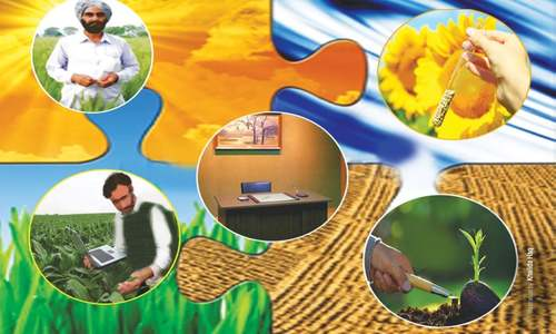 Neglected agriculture extension services