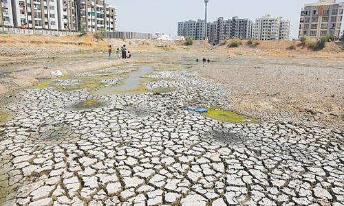 Indian court slams authorities over 'ostrich-like' attitude to drought