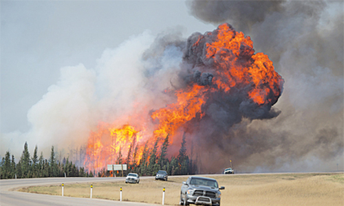 Can Canada's Trudeau see the forest fire for the trees?