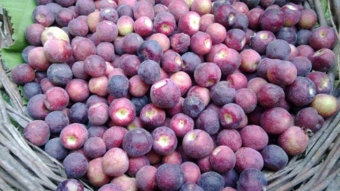Weekend Grub: Three ways to make the most of falsa season