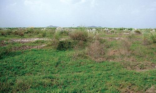 گھاس پھوس سے پختہ گھروں کی تعمیر