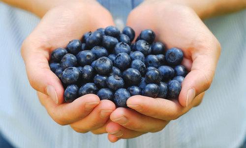 ماہ رمضان میں اچھی صحت کے لیے بہترین پھل
