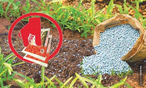 Subsidy on fertiliser