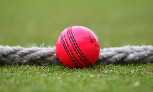 Pink ball makes first-class debut in India